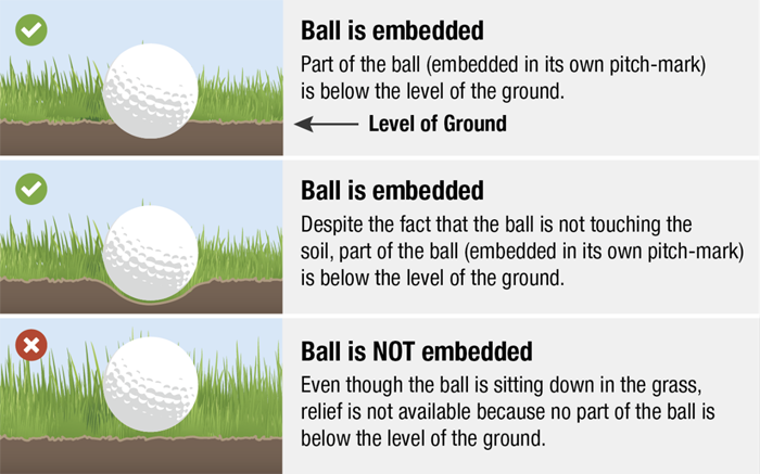 Embedded ball